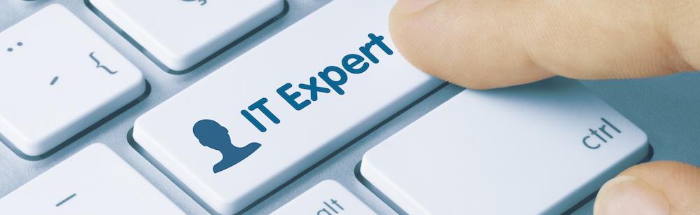 IT biztonsági szakértő